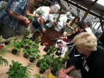 Cultivating Local Tour Group Experiences