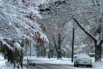 Street scene in Marion on November 17, 2014. Photo by Candice DeWitt