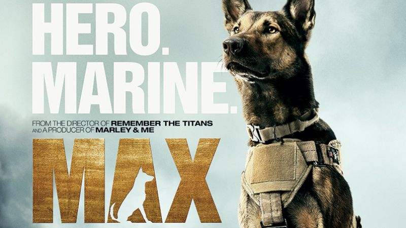 movies return to palace theatre with the family action film max
