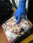 Just a portion of the 279 pounds of medication collected at the Spring 2017 Medication Disposal Day.